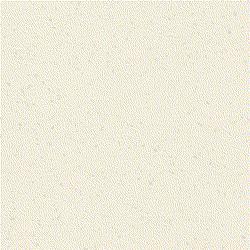 ricepaper_v3_2xt.png