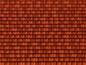 roof_04.jpg